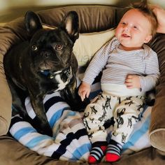 One happy baby and puppy Buster (smiling inside 👌🏻🤗). We've done organic cotton baby leggings with print of Buster for this cutest baby. Organic Forms, Baby Leggings, Personalised Gifts, Parent Gifts, Happy Baby, Baby Items, Cute Babies, Baby Gifts, French Bulldog