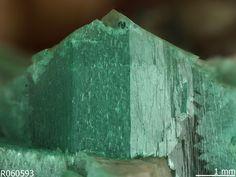 Adamite. Tsumeb mine, Tsumeb, Otavi District, Oshikoto, Namibia Source: Michael Scott S100793