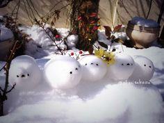 Twitter / akarisakasu: 5羽のエナガ雪だるま!できましたっ! (*・ω・)・ω・)・ ...