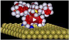 Scientists design, control movements of molecular motor Science Articles, Scientists, Design