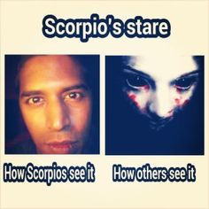 Zodiac Mind Scorpio, Scorpio Funny, Gemini And Scorpio, Astrology Scorpio, Zodiac Funny, Zodiac Sign Traits, Zodiac Signs Horoscope, Scorpio Facts, Zodiac Memes