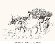 Find Asian Farmer Riding On Ox Cart stock images in HD and millions of other royalty-free stock photos, illustrations and vectors in the Shutterstock collection. Thousands of new, high-quality pictures added every day. Human Figure Sketches, Human Sketch, Human Figure Drawing, Figure Sketching, Beautiful Sketches, Art Drawings Sketches Simple, Animal Sketches, Pencil Drawings, Village Scene Drawing
