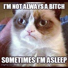 Oh this is definitely my fac Grumpy Cat pic #grumpycat