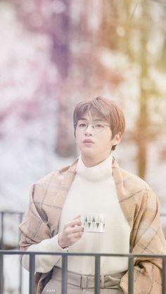 Kang Daniel - Wanna One Kpop, Park Bo Gum, Daniel K, Jihyo Twice, Wattpad, Kim Jaehwan, Ha Sungwoon, 3 In One, Jinyoung