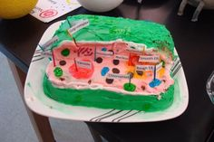 3d cell model animal cell | Students creatively made 3D models of either plant or animal cells and ...