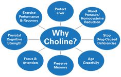 Chances are you are low on choline and you don' Since it's very important to cells in the brain, your heart, your liver and so much more, don't go another minute without understanding choline. Health Articles, Health Tips, Calf Exercises, Liver Disease, Brain Health, Gut Health, Fatty Liver, Healthy Aging, Spiritual Health