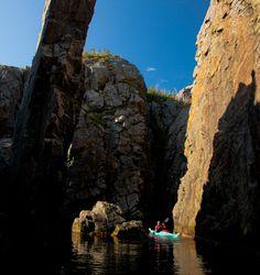 Terra Nova National Park - Newfoundland Newfoundland St Johns, Newfoundland Canada, Newfoundland And Labrador, Parks Canada, Forest Hill, Largest Countries, The Kingdom Of God, Atlantic Ocean, Travel And Tourism