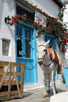 hydra island , greece