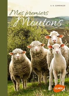 Amazon.fr - Mes premiers moutons - Anne-Kathrine Gomringer - Livres
