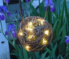 So so pretty! AND its called a firefly lantern!