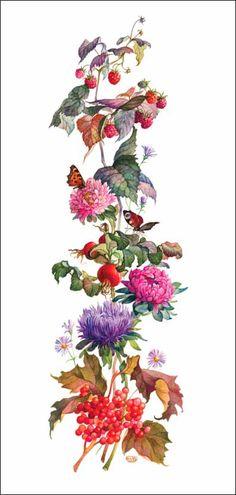 Fleur. Papillons. Астры