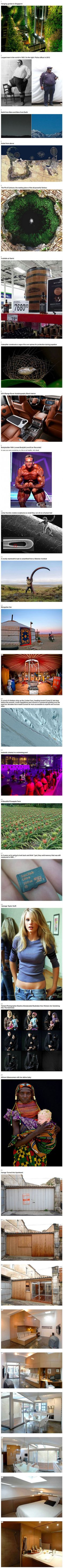 Interesting photos compilation. - Imgur Cool Pictures, Funny Pictures, Rare Pictures, Wtf Fun Facts, Random Facts, Random Stuff, The More You Know, Found Out, Things To Know