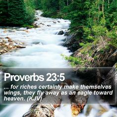 Proverbs 23:5 ... for riches certainly make themselves wings, they fly away as an eagle toward heaven. (KJV)  #Heaven #Ministry #Bible #Pastor #DailyPrayer #WordOfLife http://www.bible-sms.com/
