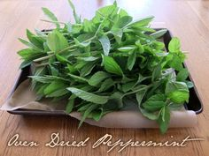 How to oven dry Peppermint - the process can be used for most herbs