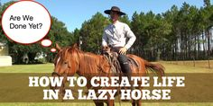 How To Create Life In A Lazy Horse.