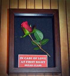 Love at First Sight  Handcrafted Cute Rose Gift for Your Date, Gift for Him, Gift for Her, Rose Gift by DaisyChainOnline, $21.50