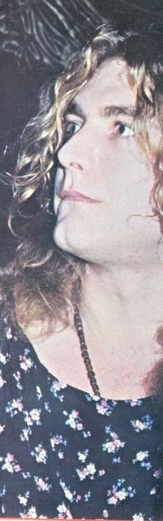 """Sur cette photo, je trouve Robert Plant très beau, pas """"sexy"""", plus que cela : troublant et vraiment beau."""