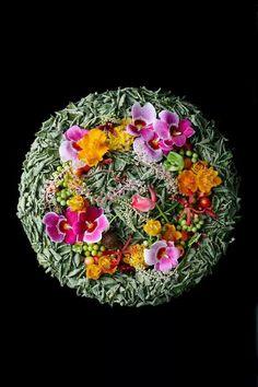 Я Yuko Takagi Flower Names, Flower Art, Growing Roses, Visual Texture, Arte Floral, Flower Designs, Art Designs, Garden Styles, Botanical Art