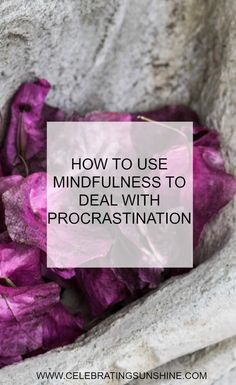 Mindfulness is a great tool when it comes to dealing with internal distractions, external distractions and procrastination.