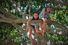 living, loving, laughing...: 10.52 {colour} twins in the tree    I stumbled across this photo and it reminded me of so many memories I had forgotten.