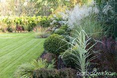 Ogród z lustrem - strona 361 - Forum ogrodnicze - Ogrodowisko Garden Entrance, Palos Park, Beds, Plants, Fox, Gardening, Outdoor, Outdoors, Lawn And Garden