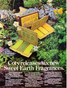 Coty Sweet Earth solid fragrances.  If only these still existed.  It was a much more organic, simple time.