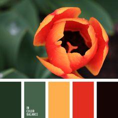 amarillo anaranjado, amarillo y anaranjado, anaranjado, anaranjado vivo, color anaranjado, color casi negro, color esmeralda, colores verde y miel, elección del color, selección de colores para un piso, tonos verdes, verde apagado, verde y anaranjado.