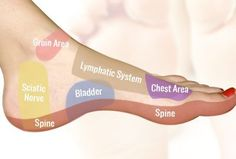 Foot Reflexology on the Inside of the Foot
