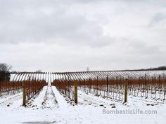 Niagara Wine Country - Ontario, Canada