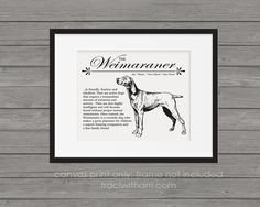 Weimaraner Storybook Style Canvas Print: A by TraciWithaniDesigns