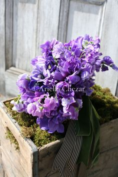 def need to plan some sweet peas this spring!!! ---sweet pea bouquet