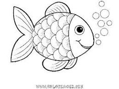 Výsledek obrázku pro fish drawing