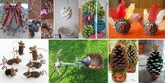 pine-cone-ideas.jpg 640×324 pixelů