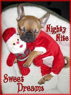 Nighty Nite Sweet Dreams Christmas Time Quote