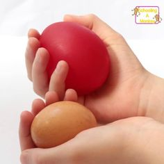 This twist on the classic naked egg science experiment illustrates the concept of osmosis for kids in a fun and surprising way. Kindergarten Science Experiments, Kindergarten Stem, Easy Science Experiments, Science Fair Projects, Stem Projects, Preschool Science, School Projects, Science Activities For Kids, Stem Activities