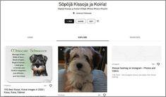 Tässä kyseisessä artikkelissa läpi käymme, että mikä on StayKeen & Miten sitä käytetään? Käymme läpi StayKeen palvelun toimintoja ja mahdollisuuksia! #staykeen #keen #suomi #palvelu #gem #taulu #google #toiminto #mahdollisuus Google, Dogs, Animals, Animales, Animaux, Pet Dogs, Doggies, Animal, Animais