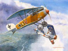 Voss's 34th, watercolour by Steve Anderson (Werner Voss' Albatros D.III bags Flt. Lt. Fabian Pember Reeves' Nieuport 17 of 6 Naval Squadron, June 6, 1917)
