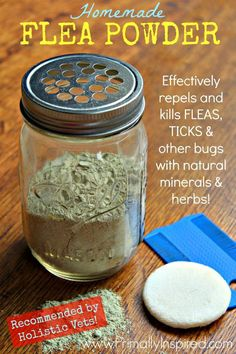 DIY Flea Powder . Definitely have to test this out
