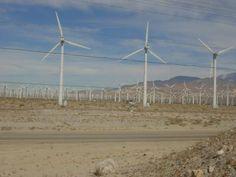 Bekannte US-Konzerne setzen auf Solar- und Windenergie