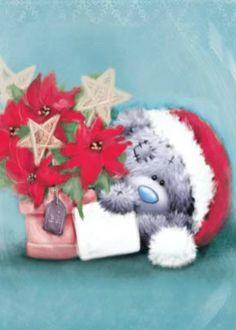 Teddy Weihnachten.695 Best Tatty Teddy Images In 2016 Blue Nose Friends Tatty Teddy