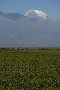 Ya casi nos vamos - Mendoza - Argentina