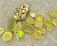 ocean treasure. Oh, How I would love to find this on some beach!