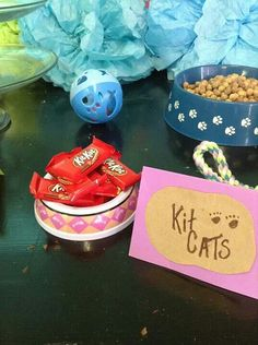 Cat and dog Party - Shopkins Party Ideas