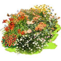Projet aménagement jardin : Jardin aux couleurs estivales