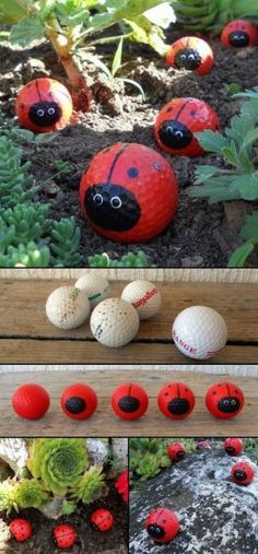 Got some old golf balls at home? Then recycle them and make Golf Ball Ladybugs! Got some old golf balls at home? Then recycle them and make Golf Ball Ladybugs! Got some old golf balls at home? Then recycle them and make Garden Projects, Craft Projects, Projects To Try, Garden Ideas Diy, Garden Kids, Gardening With Kids, Garden Ideas For Toddlers, Gardens For Kids, Kids Garden Crafts