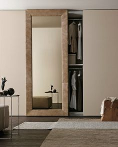 Image result for closet with mirror