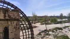 Noria en el río Guadalquivir