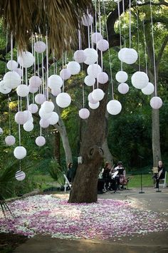 hmmmm...perhaps white ad grey paper laterns/balloons/some kind of ball as a backdrop for ring ceremony