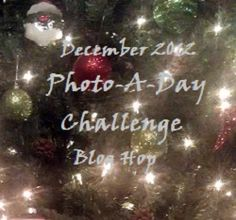 Mama Making Changes: December Photo-A-Day Challenge Hop (Still accepting blogger sign ups!)