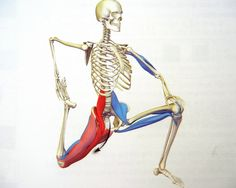activating the Psoas